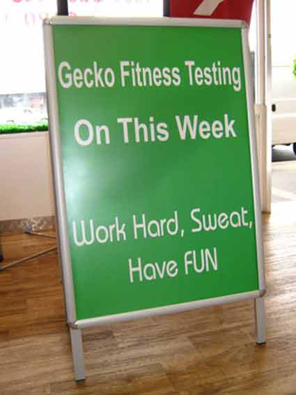 Changeable Board of Gecko Fitness Testing